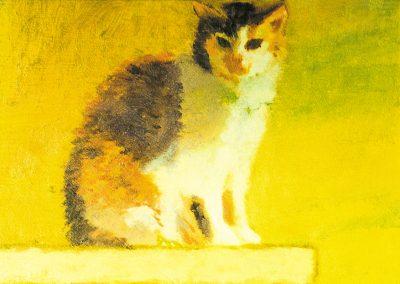 Sitting Cat